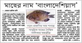 নতুন প্রজাতির সামুদ্রিক মাছ 'বাংলাদেশিয়াস'