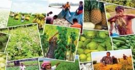 বিশ্বে খাদ্য উৎপাদনে উদাহরণ বাংলাদেশ